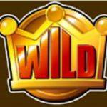 Wild 40 Yellow Fire